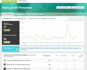 pint_analytics - Formation reseaux sociaux