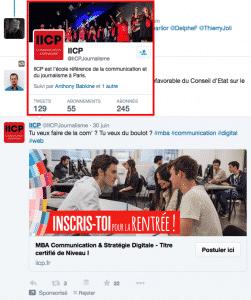 Apercu flottant Twitter
