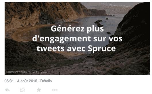 Publication Tweet Spruce