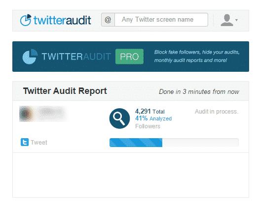 twt_audit2