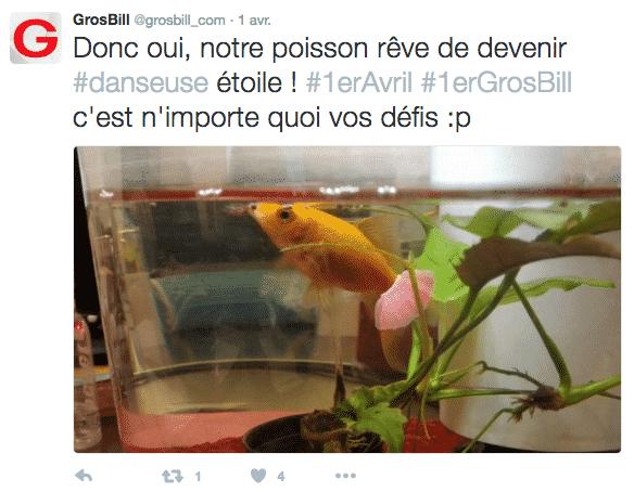 Poisson Grosbill