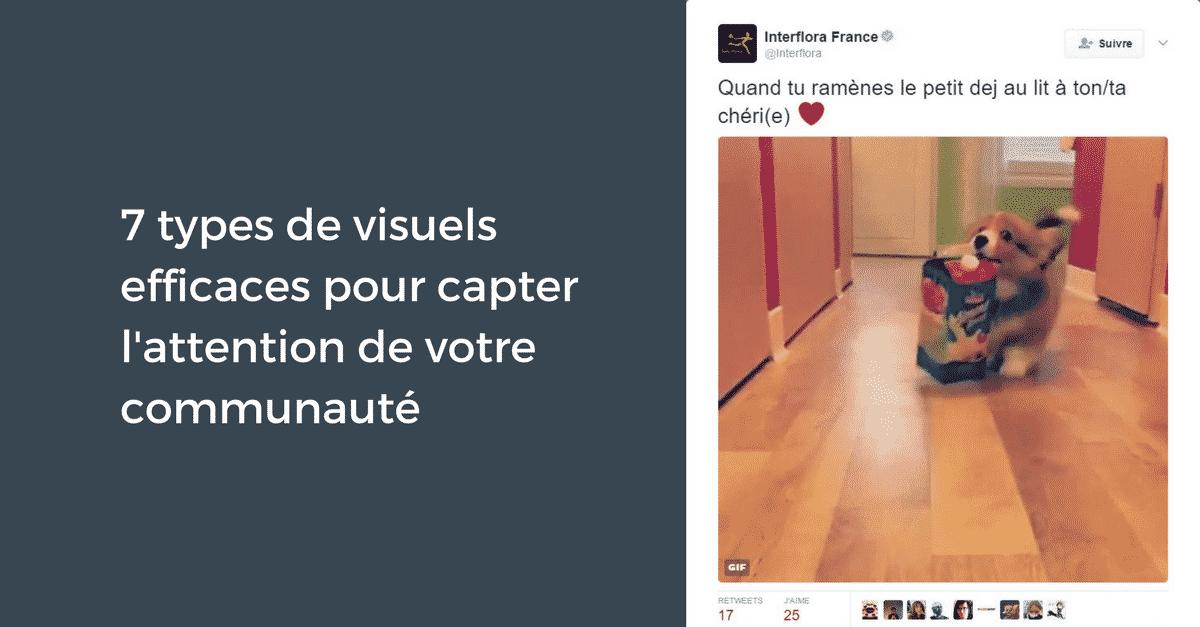 7 types de visuels efficaces pour capter l'attention de votre communauté