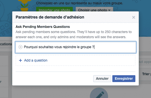 Questionnaire Groupe Facebook 2