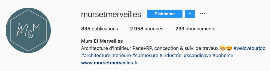 50 exemples concrets pour r u00e9diger une biographie instagram